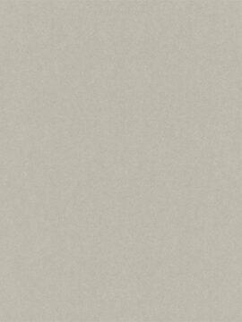 Emilia #501179